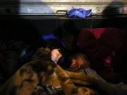 Xót xa cảnh trẻ vô gia cư ngủ vỉa hè ngày đông lạnh