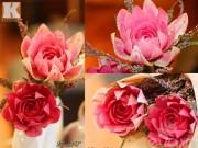 Bếp Eva - Tỉa hoa từ củ cải đỏ siêu đẹp trang trí bàn ăn