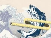 Sức khỏe - Dầu cá giúp giảm tăng cân ở giới trung niên