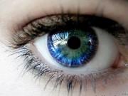 Tin tức sức khỏe - Bạn biết gì về ngày thị giác thế giới?