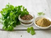 Sức khỏe - Tác dụng bất ngờ của rau mùi với sức khỏe