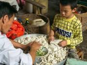 Tin tức - Cậu bé 8 tuổi làm 10.000 chiếc bánh một ngày để giúp đỡ gia đình