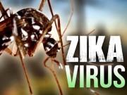 Tin tức - Phát hiện 7 trường hợp nhiễm virus Zika ở Việt Nam