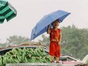 Thực hư bức ảnh bé trai Sài Gòn  & quot;khóc thương miền Trung & quot; khiến ngàn người xúc động
