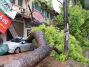 Tin tức - Ảnh hưởng bão số 7, Hà Nội có mưa lớn và gió giật cấp 6
