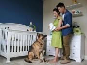 Làm mẹ - Lần đầu làm bố, chàng trai trẻ chụp ảnh vợ mỗi ngày để xua tan lo lắng