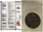 Bếp Eva - Chỉ với 1 đồng xu, bạn sẽ biết tủ lạnh bị mất điện khi vắng nhà