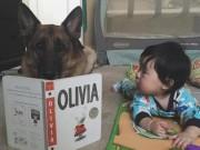 Làm mẹ - Cách kích thích trí thông minh trẻ 4-6 tháng tuổi tăng vọt của người Nhật