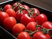 Sức khỏe - 9 loại trái cây ăn vào là tiêu mỡ bụng