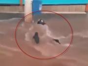 Clip Eva - Brazil: Xoáy nước cuồn cuộn suýt cuốn người đi xe máy xuống hố ga mở nắp