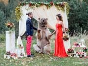 Eva Yêu - Gấu khổng lồ xuất hiện trong đám cưới và điều bất ngờ đã xảy ra