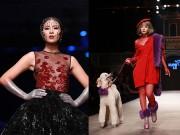 Thời trang - Hoa hậu Ngọc Hân táo bạo không nội y, Chi Pu dắt cún trên sàn diễn