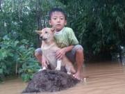 Bơi ra dòng nước lũ cứu chó nhưng không thể vào bờ, chú bé 6 tuổi bật khóc