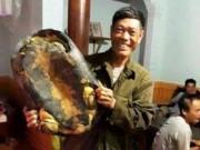 Tin tức - Ra bờ ao, người dân bất ngờ phát hiện rùa 'khủng' nặng 16 kg
