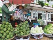 Mua sắm - Giá cả - Hàng Trung Quốc lại nhái nông sản Đà Lạt