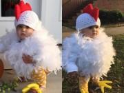 Clip Eva - Em là chú gà kiêu kỳ cực đáng yêu nhé