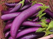 Sức khỏe - 8 thực phẩm giúp giết chết tế bào ung thư