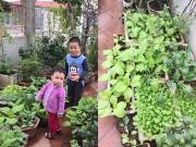 Nhà đẹp - Ông bố 2 con biến sân thượng thành vườn rau, vườn hoa ngợp mắt