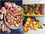 """Nhà đẹp - Mẹ Việt """"quý hoa hồng hơn kim cương"""" mách cách sấy khô cánh hoa làm trà"""
