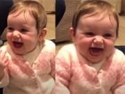 Clip Eva - Em bé cười ngặt nghẽo khi nghe bố kể về 4 chú heo