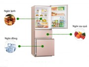 Eva Sành điệu - Bí quyết chọn mua và sử dụng tủ lạnh tiết kiệm điện