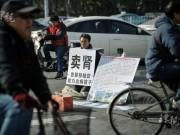 Tin tức - Cha già quỳ giữa phố rao bán thận để cứu con trai bị bạo bệnh