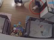 Tin tức - Cậu bé 9 tuổi chạy nhanh như chớp cứu em trai 11 tháng rơi từ trên bàn xuống đất