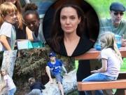 Làng sao - Angelina Jolie coi anh trai như giúp việc dù được giúp đỡ sau khi ly hôn