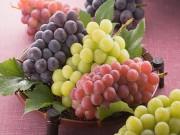Sức khỏe - 7 món quen thuộc nên ăn để phòng chống ung thư