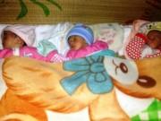 Tin tức - Một phụ nữ mang bầu tự nhiên sinh ba khác trứng hiếm gặp ở Việt Nam