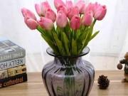 Nhà đẹp - Kỹ thuật trồng hoa Tulip trổ bông 100% để kịp trang trí nhà đón Tết