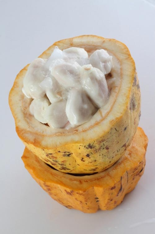 Lạ miệng cacao dầm đá - 1