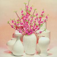 Trang trí hoa cho ngày Tết