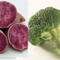 10 thực phẩm lành mạnh nên thường xuyên sử dụng