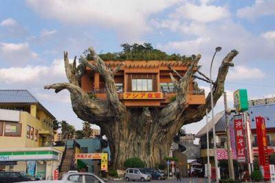 Những ngôi nhà độc đáo, sáng tạo và đẹp mắt nhất thế giới - 19