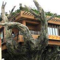 Những ngôi nhà độc đáo, sáng tạo và đẹp mắt nhất thế giới