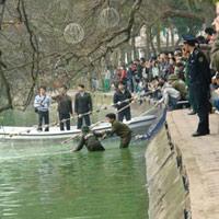 Trực tiếp: 'Bắt' cụ Rùa Hồ Gươm để chữa trị