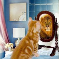 7 nguyên tắc cần biết khi treo gương trong nhà