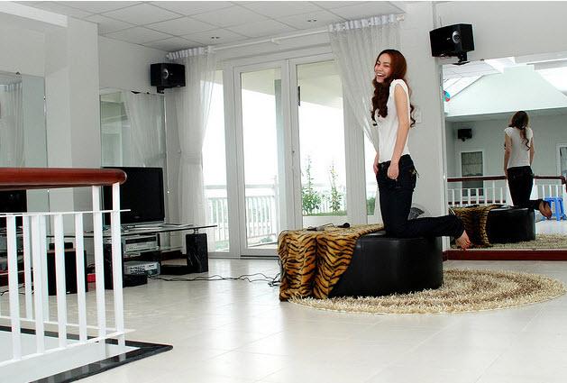 """Top 10 nhà sao Việt """"đình đám"""" nhất 2011 - 2"""