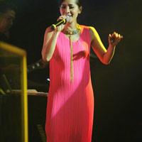 Diva Hồng Nhung đang có bầu?