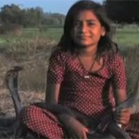 Lạ kỳ cô bé thích làm bạn với rắn hổ mang