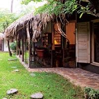 Nhà đẹp Sài Gòn của vợ chồng Tây