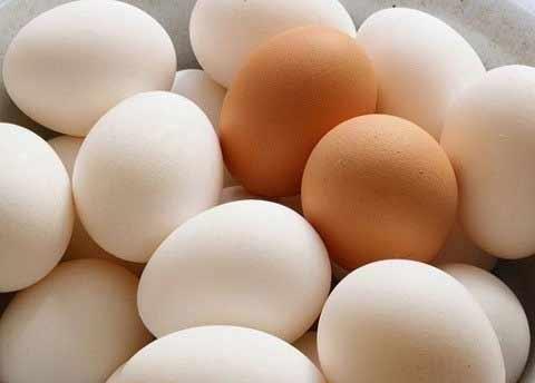 Hết sốt giá trứng gà-1