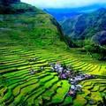 Xem & Đọc - Choáng ngợp ruộng bậc thang kỳ vĩ ở Philippines