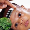 Làm mẹ - Hạ sốt cho bé bằng lá ngải cứu