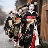 Sức hút từ trang phục truyền thống kimono