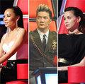 Làng sao - The Voice: 'Soi' mùa 1, chọn HLV mùa 2
