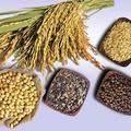 Sức khỏe - Kết hợp thực phẩm có lợi cho sức khỏe
