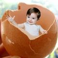 Làm mẹ - Cấm kỵ khi cho bé ăn trứng gà