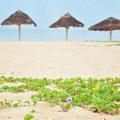 Xem & Đọc - Chọn điểm du lịch Việt theo 'gu' từng người